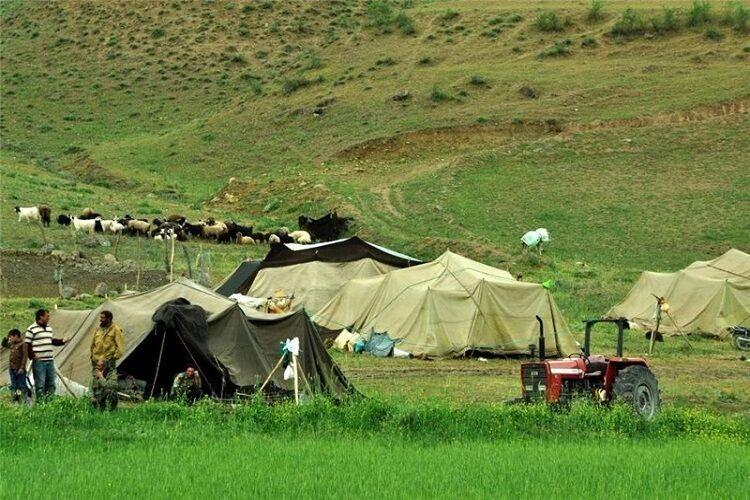 خبرنگاران تنها 10 درصد درآمد عشایر خراسان شمالی وابسته به دام نیست